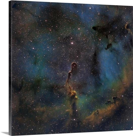 IC 1396, the Elephant Trunk Nebula Photo Canvas Print ...