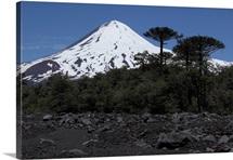 Llaima volcano Araucania region Chile