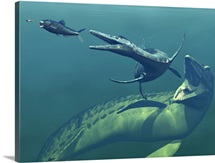 Marine predators of the Cretaceous period