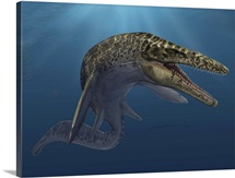Mosasaurus hoffmanni swimming in prehistoric waters