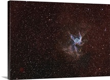 NGC 2359, Thor's Helmet in Canis Major