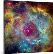 Rosette nebula NGC 2244 in Monoceros