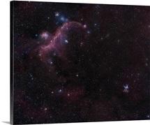 The Seagull Nebula and Thor's Helmet nebula