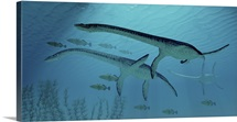 Three Plesiosaurus dinosaurs migrate with a school of fish