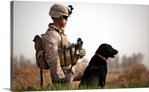U.S. Marine holds security in a field with his IED detection dog