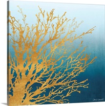 Coastal Coral on Bright Teal I