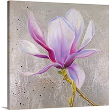 Magnolia on Silver Leaf II