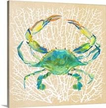 Sealife Crab