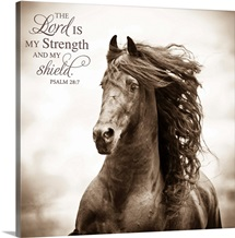 The Lord is my Strength (War Horse)