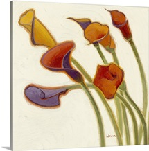 Callas in the Wind II