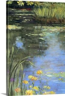 Garden Pond II