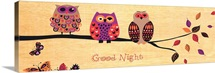 Good Night Owl
