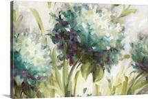 Hydrangea Field