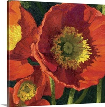 Red Poppy Trio I