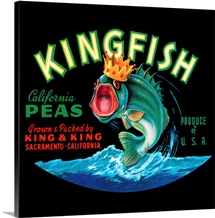 Kingfish