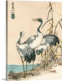 Oriental Crane II