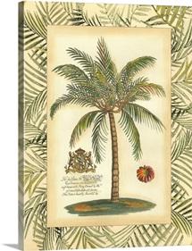 Palm in Bamboo II