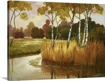 Reeds, Birches