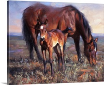The Bay Filly