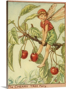 The Cherry Tree Fairy