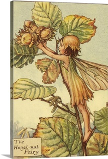 The Hazelnut Fairy