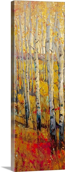 Vivid Birch Forest I