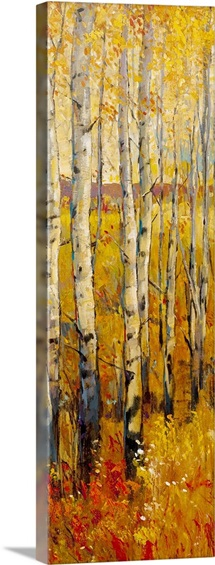 Vivid Birch Forest II