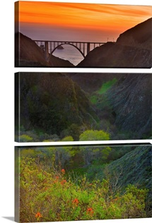 USA, California, Big Sur, Bixby Bridge