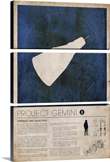 Project Gemini (info)