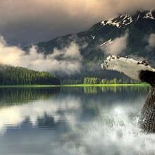 Humpback Whale Breaching Southeast AK Digital Image summer portrait Composite