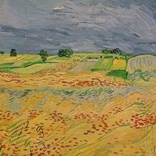Plain at Auvers, 1890