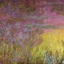 Waterlilies at Sunset, 1915 26 (oil on canvas) (detail of left side)