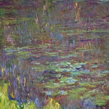 Waterlilies at Sunset, detail from the right hand side, 1915 26 (oil on canvas)