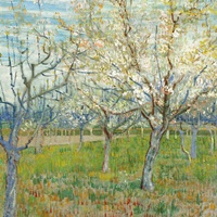 The Pink Orchard By Vincent Van Gogh