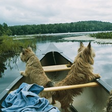 Lake Kezar, Maine