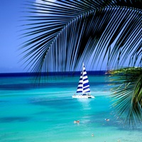 Sail Boat, Waikiki, Hawaii, USA