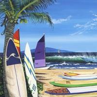 Surf N Sail