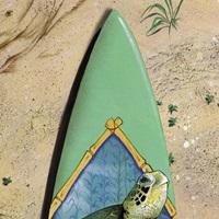 Turtle Board