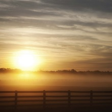 A misty dawn over a rural scene in Loudon County, Virginia