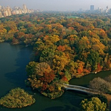 Central Park and the Manhattan skyline in the fall, New York City, New York