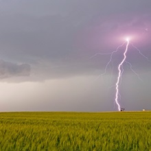 Lightning storm produces intense purple lightning bolt over a field