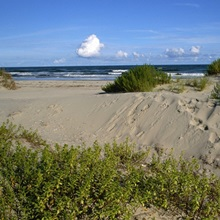 Ocracoke Island in the Outer Banks.
