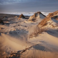 Sand dunes ripple across the Outer Banks of North Carolina