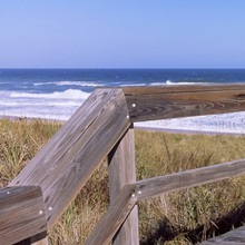 Boardwalk leading towards a beach, Playlinda Beach, Canaveral National Seashore, Titusville, Florida