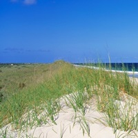 Cape Hatteras National Park Outer Banks NC