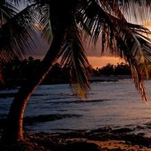 Kohala Coast Hawaii HI