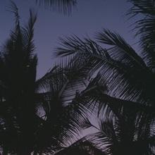 Mauna Lani Resorts HI