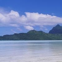 Palm trees on the beach, Bora Bora, French Polynesia