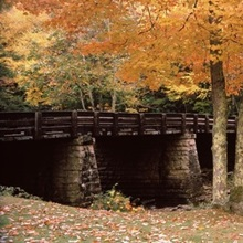 Power station in a forest, Glade Creek Grist Mill, Babcock State Park, West Virginia,