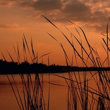 Sunset over a lake, Lake Travis, Austin, Texas